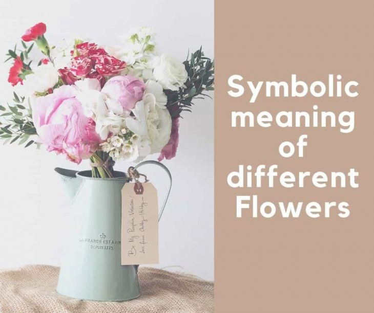 Flower Symbolism in Cultures: symbolic meaning of different flowers